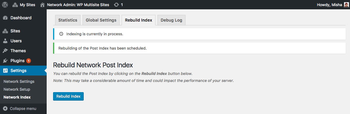 Go to the Rebuld Index tab if you want to add your old posts to the network index.
