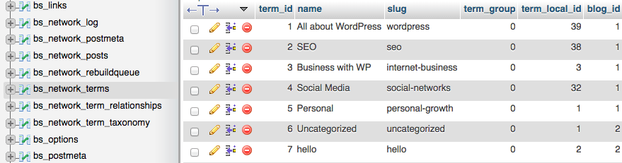 All the terms across WordPress Multisite network in the database table (phpMyAdmin).