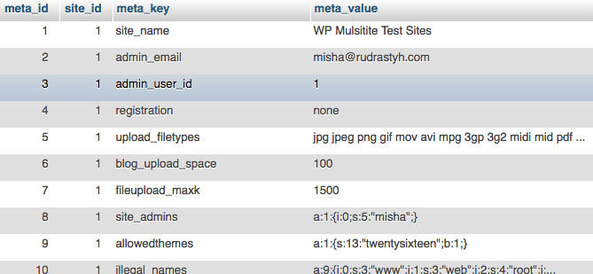 wp_sitemeta Multisite table